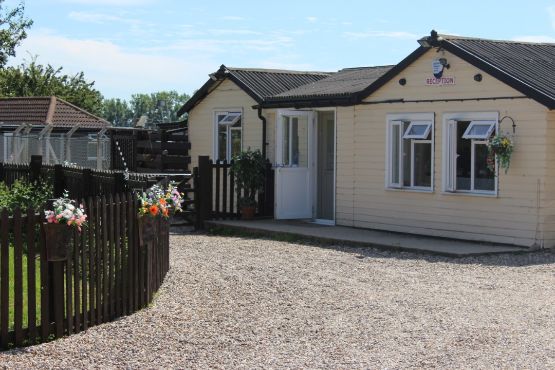 Latneys Kennels, Cattery and Grooming Parlour